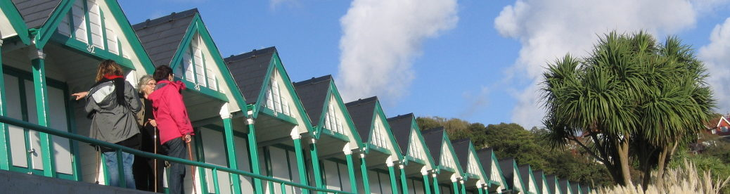 Gower cottage Langland